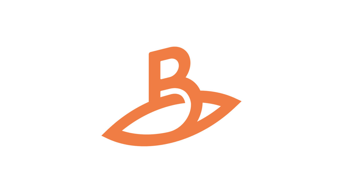Logo B-dam